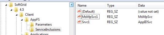 ServiceInclusions key in default 4.6 SP1 installation